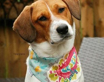 Dog Bandana || Cheeky Paisley Dog Bandana || Classic Tie Pet Pupdana || Pink Turquoise Aqua || Personalized Puppy Gift || Three Spoiled Dogs