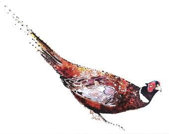 """PHEASANT"""" Print Watercolour A3 (30*40cm/16*12 Inches)"""