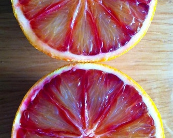 Food Photography Food Art digital print red blood orange kitchen wall art