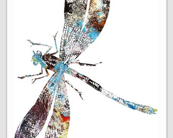 DRAGONFLY Watercolor print 159