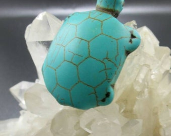 Carved Turquoise Turtle Pendant.