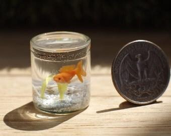 Aquarium . Small fish in the aquarium. Aquarium of the dollhouse . Aquarium in 1/12 scale .