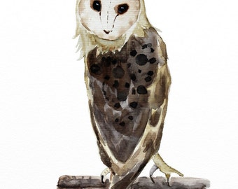 barn owl original watercolor painting barn owl painting bird painting 28,2x21cm (approx.11.24x8.4inch)