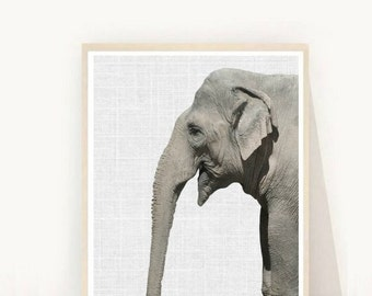 Elephant Art, Elephant Nursery, Printable Wall Art, Wild Animals, Elephant Print, Animal Print, Instant Download, Wall Decor,Wall Art