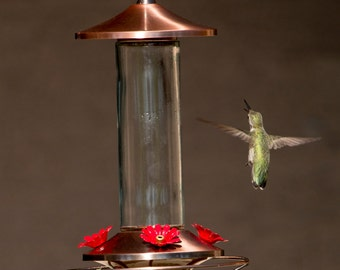 Brushed Metal and Glass Hummingbird Feeder - Super Easy-to-Use & Hummers LOVE It!