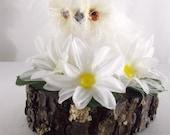 Woodland Valentine, Woodland Owls, Woodland Valentine Owls, Woodland Decor