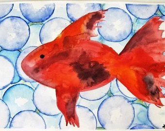 Beta Fish Original