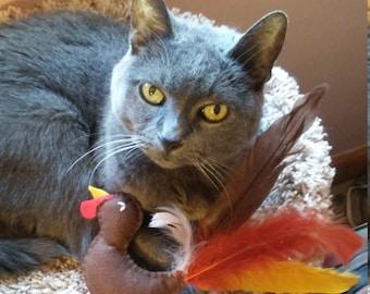 Turkey Feather & Organic Catnip Cat Toy