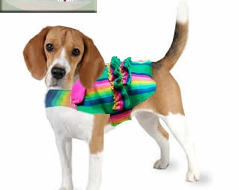 Dog ruffles Mexican outfit
