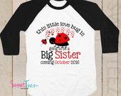 Valentines Big Sister Shirt Big Cousin Love Bug Personalized Shirt ladybug Raglan Boy Sibling Announcement
