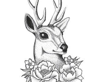 """Deer In Flowers 8""""x8"""" Print"""