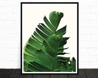 Tropical Print, Palm Leaf Print, Banana Leaf Print, Green, Leaves, Botanical Print, Plant Print, Palm Print, Scandinavian Poster, Nature Art