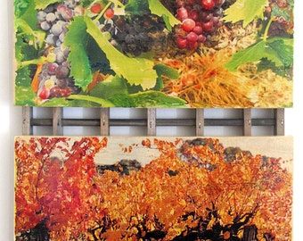 Colourful wood-based images of vines and wines!