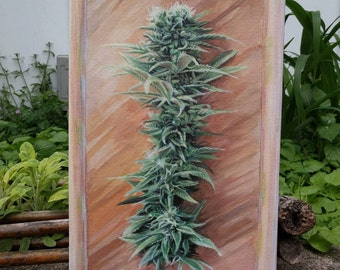 Print on Stretched Canvas Cannabis Branch