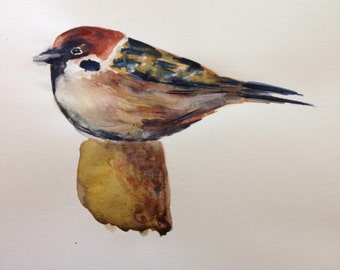 Sparrow water colour painting