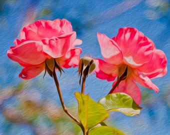 """Pink Rose """" Pinky Promise """". Fine Art Photography - Photography - Pink Rose Photograph Instant Digital Download Pohotgraphy"""