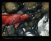 Red Koi Original ACEO 2.5 x 3.5 Watercolor Painting Trading Card Art