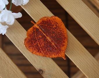Aspen Leaf Brooch Copper, Aspen Leaf Pin, Real Leaf, Copper Leaf, Orangic pin, Nature, BROOCH81