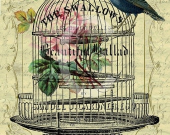 Vintage Bird cage Swallows Large digital download ECS buy 3 get one free pink roses printable