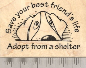 Animal Welfare Rubber Stamp, Save your best friend's life, Adopt from a shelter J20919 Wood Mounted