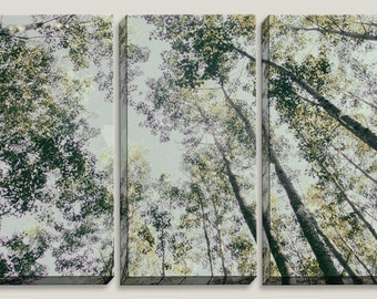 Lavender and Mint, Canvas Art, Birch Trees, Birch Tree Art, Wall Art, Forest, Woods, Michigan, Pastel, Home Decor, Childrens Room, Sky