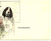 Vintage SPANIEL, DESIGNED, SIGNED - Early French Printed Postcard - back 3 lines not written - years 1900 - Good Condition, fresh colors