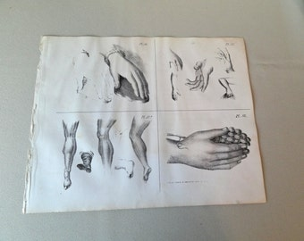 Antique original  lithographs, 12 sheets, 1852, Oxford Drawing Book