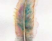 Watercolour feather painting ~ teal blue, pink and gold fantasy feather