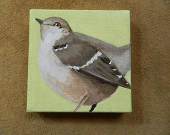 Tennessee State Bird - Mocking Bird - painting