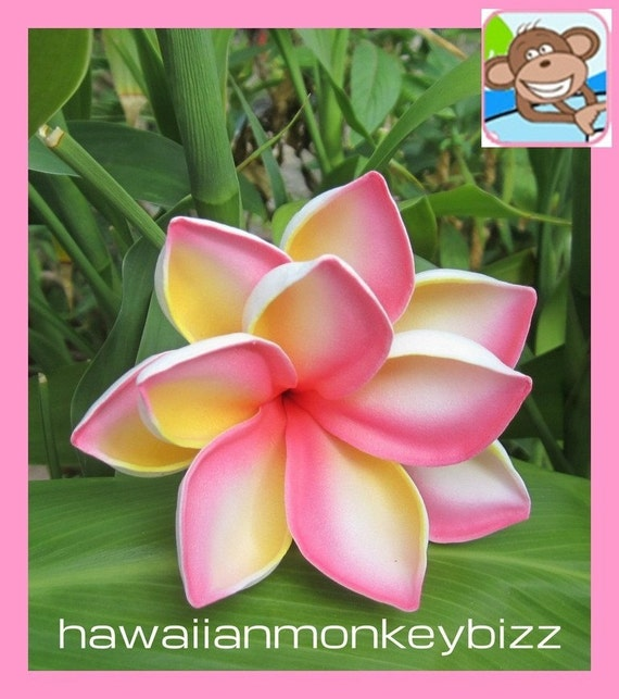 TROPICAL PLUMERIA ROSETTE Hair Pick - Your Choice of 1 . . .