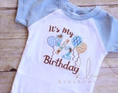 1/2 Birthday Embroidered Shirt, Baby Boy 6 Month Outfit, 6m Pictures, Light Blue, White, Balloons, Neutrals, Brown