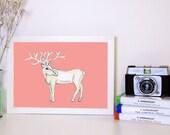Deer Art print, A4 Deer Illustration