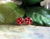 Spotted Ladybug Earrings