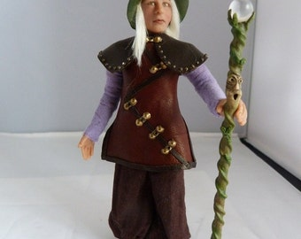 The Elfin wizard