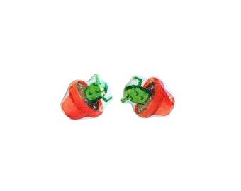 Cute Cactus earrings / Cactus Stud Earrings / Cactaceae  Earrings / Succulent earrings