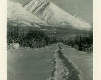"Vintage Photo ""The Yeti Trail"" Snapshot Photo Old Antique Photo Black & White Photograph Found Photo Paper Ephemera Vernacular - 164"