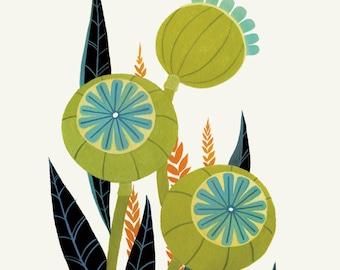 Olive & Teal Poppy Pods - Fine Art Print 8X10