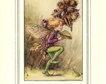 THE BURDOCK FAIRY  Original Antique c 1940 Color Plate The Book of Flower Fairies Cicely Barker