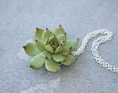 Green Succulent Planter Necklace Pendant Wholesale Mini Succulent Plants Arrangement Succulent Jewelry Wedding Birthday Bridal Gifts Jewelry