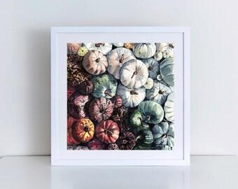 Rainbow of Pumpkins -Giclee Print of Watercolor Painting- Autumn Fall Season Farmers Market Harvest Colors Halloween Gourds Pumpkin Spice