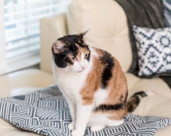 Modern cat bed catnip inside. Gifts for him. Cat guy gift. Washable catnip cat mat. Gray cat blanket. Kitty bed. Cat gift. Catnip cuddler