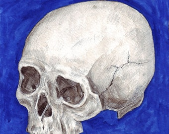 Skull 8x8 print of original watercolor painting blue