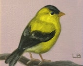 Original Oil Painting Tiny Goldfinch