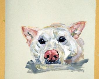 Ready to ship, Original dog painting on paper Shiba Inu