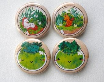 succulent terrariums 1.25inch pinback buttons pack