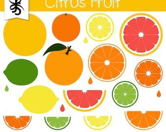 slices of fruit digital clip art summer fruits slices of