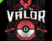 Team Valor PG inspired game vintage design digital art signed premium quality giclée archival poster print