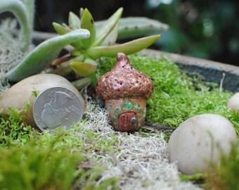 Small Fairy House, Acorn House, Fairy House, Fairy Home, Fairy Garden, Mini House, Faerie Garden, Acorn Fairy, Fairy Door, Pixie House