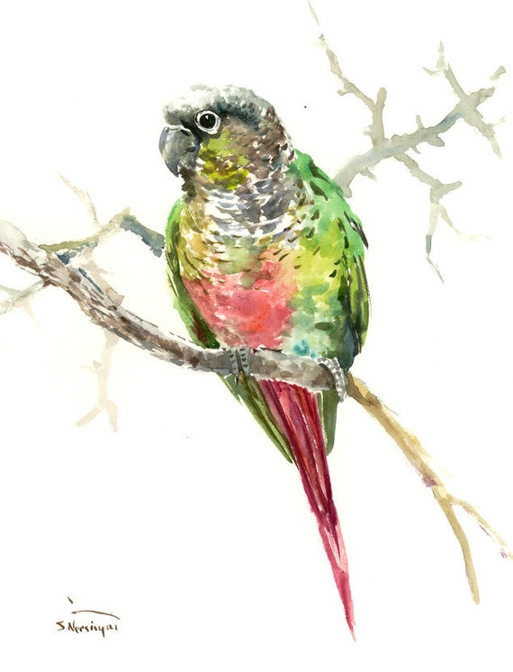 Green parrot painting - photo#27