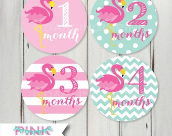 Baby Girl Monthly Stickers - Pink Flamingo Milestone Stickers - Polka Dots - Stripes - Month by Month Newborn Photo Prop - Belly Bodysuit